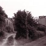 Date - 1979. Wharram. Photo Ref 322.Looking towards Driffield©  W R Burton