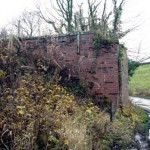 Date - 22/11/2009. Wharram. Photo Ref 374.The bridge abutments that carried the line from Malton into Wharram Station can just be made out. The abutments where demolished shortly after©  Phil Robson